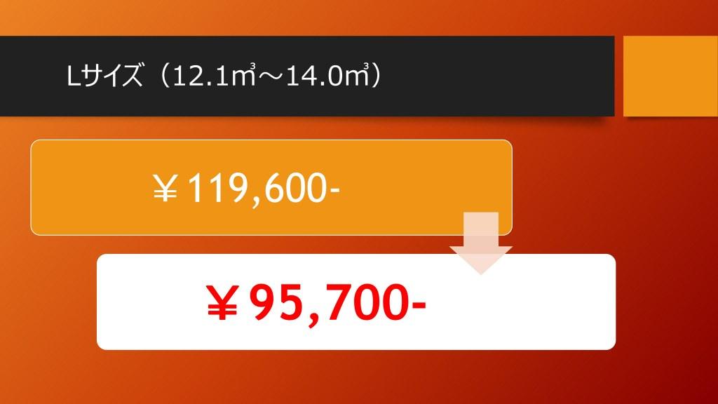 キャンペーン価格Lサイズ