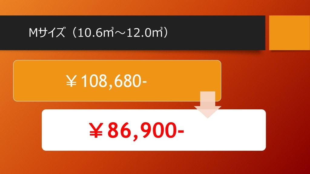 キャンペーン価格Mサイズ